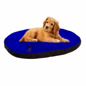 Dog relaxing beds